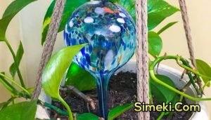 how do watering globes work